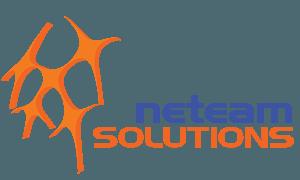 Neteam Solutions Logo